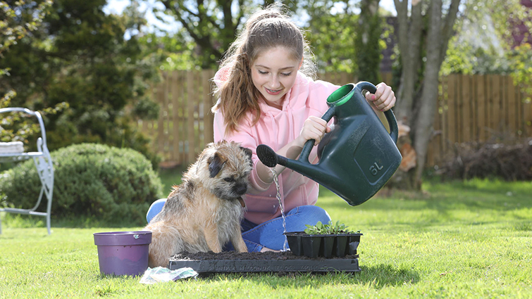 Teenager Amelia Barrington is pictured sitting in her back garden planting wildflowers. She has long brown hair tied back and is wearing a pink hoodie and jeans. The family dog, a small terrier, is sitting with her as she waters the plants.